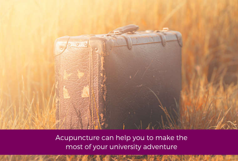 Acupuncture Can Help You To Make The Most Of Your University Adventure