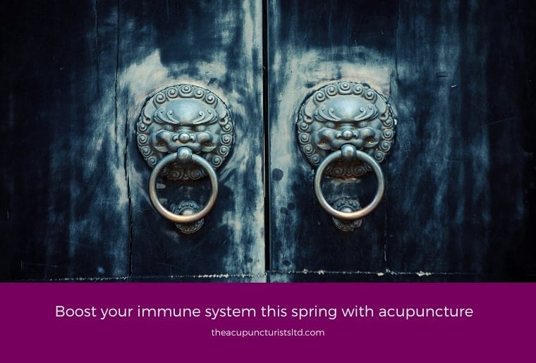 Boost Your Immune System This Spring With Acupuncture