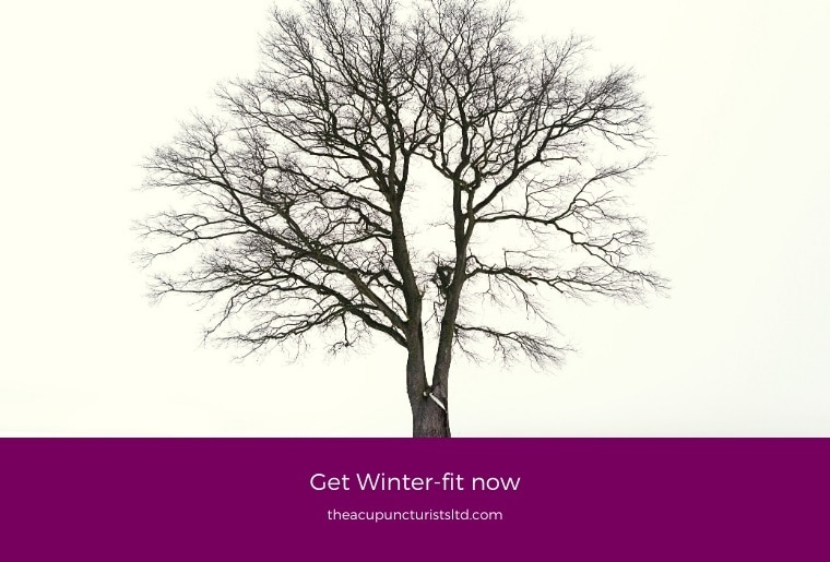 Get Winter Fit With Acupuncture