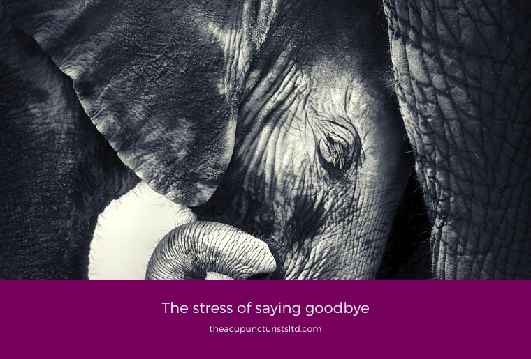 The Stress Of Saying Goodbye